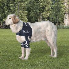 Balto Dog Shoulder Brace - Small