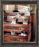 Funny Cat Kittens in Drawers Cute Animal Wall Decor Art Framed Picture (20x24)