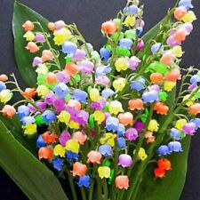 Rare Lily of Valley Flower Seeds Colored Rainbow Bell Orchid Seed UK STOCK