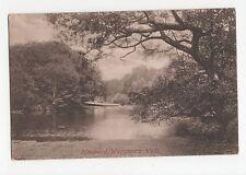 Hindhead, Waggoners Wells Postcard, A409
