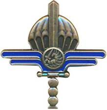 Brevet Maintenance Parachutage Largage, Bronze, Beraudy GS 331 (11112)