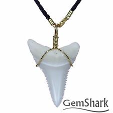 Modern Great White Shark Tooth Necklace 1.8'' Pendant 14 K gold plating Chain