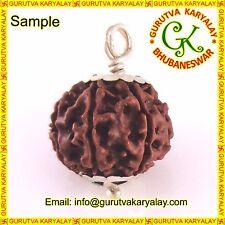 Mantra Siddha Natural 5 Mukhi Nepali Rudraksha In Best Silver Pendant 16-17 MM