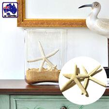 10pcs 5-10CM Fingers Starfish Sea Beach Wedding Coastal Decor Craft HDNB38800x10