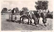 Cyprus Threshing Corn Farming Scene Real Photo Vintage Postcard AA43262