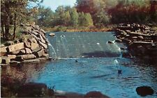 Springfield Massachusetts~Squirting Fountain Below Forest Park  Dam 1950s