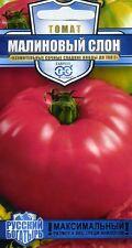 "Tomato ""Crimson Elephant"" Russian High Quality"