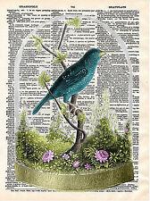 Art N Wordz Bird Under Glass Original Dictionary Sheet Print Wall/Desk Pop Art