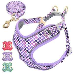 Fancy Dog Harness and Lead set for Medium Dogs Reflective Soft Mesh Vest Harness