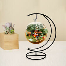 Moon Hanging Terrarium Glass Desktop Flower Figurines Vases Holder Home Garden