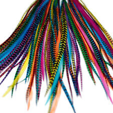 20 BRIGHT LONG FEATHER HAIR EXTENSIONS KIT: RINGS INCLUDED (B GRADE)