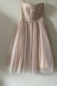River Island Blush Pink Tutu Corset Tulle Dress Size 8 Prom SATC