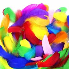 300 Soft Natural Colorful Feathers 8-12cm DIY Craft Wedding Party Decor