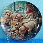Golden Retriever Handle With Care LE Plate Bradford Cute Little Bandits 1993