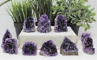 Stunning Small Amethyst Cut Base Cluster, Crystal Quartz Geode (3 - 4 oz)