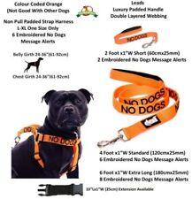 Arneses de nailon XL para perros