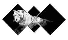Tigre blanc sur toile noire Art Mural Animal image Diamant 4 piece Split 148cm