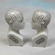Phrenology Head Bookends Ceramic - Medical Student Ornament Scientific