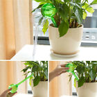 Handstand Automatic Watering Device System Houseplant Plant Pot Bulb Garden Tool