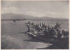 D8574 Isola di Garda dalla Punta di San Felice - Stampa d'epoca - 1936 old print