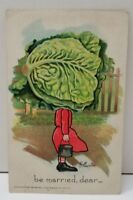 Cabbage Head Veggie People 1907 Fantasy Farm Lady Anthropomorphic Postcard