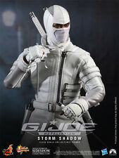 Storm Shadow Hot Toys 12 inch figure G.I. Joe Retaliation