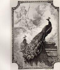 EAU FORTE / Fables de la Fontaine 1883 / LE PAN SE PLAIGNANT A JUNON