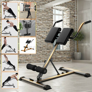 Back Hyperextension Dumbbell Bench Exercise Fitness Roman Chair Floor