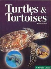 Turtles and Tortoises (A Firefly Guide)