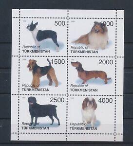 LO13638 Turkmenistan pets animals dogs good sheet MNH