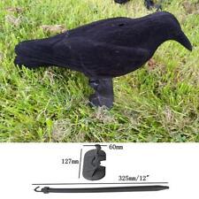 Schwarze Raven Krähe Lockvogel Taubenabwehr Taubenschreck Garten