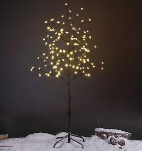 5 Foot Tall Star Blossom Lighted Indoor/Outdoor Twig Christmas Tree