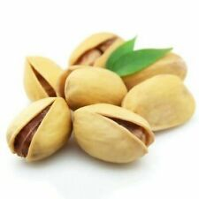 5 Pistachio Tree Seeds Pistacia Rare Plants Nut Tree Tropical Plants for Garden