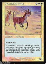 MTG - Odyssey - Graceful Antelope - Foil - NM