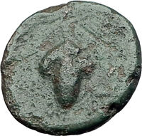 DIONYSOPOLIS in MOESIA 220BC Dionysus Grapes Authentic Ancient Greek Coin i61335