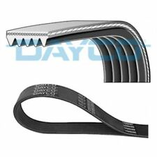 DAYCO V-Ribbed Belts 5PK884