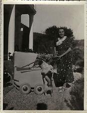 PHOTO ANCIENNE - VINTAGE SNAPSHOT - ANIMAL ENFANT LANDAU GAG DRÔLE - DOG CHILD
