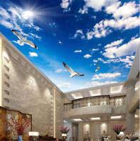 Intact Vague Dove 3D Ceiling Mural Full Wall Photo Wallpaper Print Home Decor