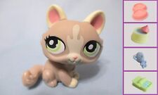 Littlest Pet Shop Cat Crouching Gray 1370 and Free Accessory Authentic Lps
