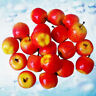100 Fake Mini for Apples Plastic Artificial Fruit House Party Kitchen Decor Prop