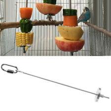 Large Parrot Fruit Skewer | Stainless Steel Bird Treat Spear Feeder Hanging