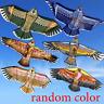 Fashion 1.1M Flying Eagle Kite Novelty Animal Kites Outdoor Sport Kid's Toy US