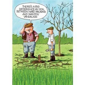 Hard Pruning Greetings Card,Gardeners Weakly, birthday, funny,humorous,gardening