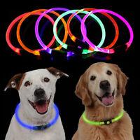 Ee _ Brillante Recargable LED Noche USB Anti-pérdidas Mascota Perro Collar
