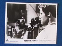 "Original Press Promo Photo - 10""x8"" - Monkey Shines - 1988 - Ella & Jason Beghe"