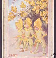 Gorse Flower Fairies,Thorn Swords,Tarrant Old Postcard