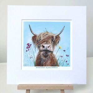Young Highland painting cow hairy coo small print  10x10in by Julia Pankhurst