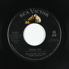Surf Inst. 45 - Hal Blaine & The Young Cougars - Hawaii 1963 - RCA Victor - mp3