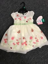 jona michelle Baby Floral dress Size 18m NWT