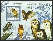 Comoros Anjouan Scops Owl Otus Capnodes Endemic Birds of  Prey Imperf ** 2009